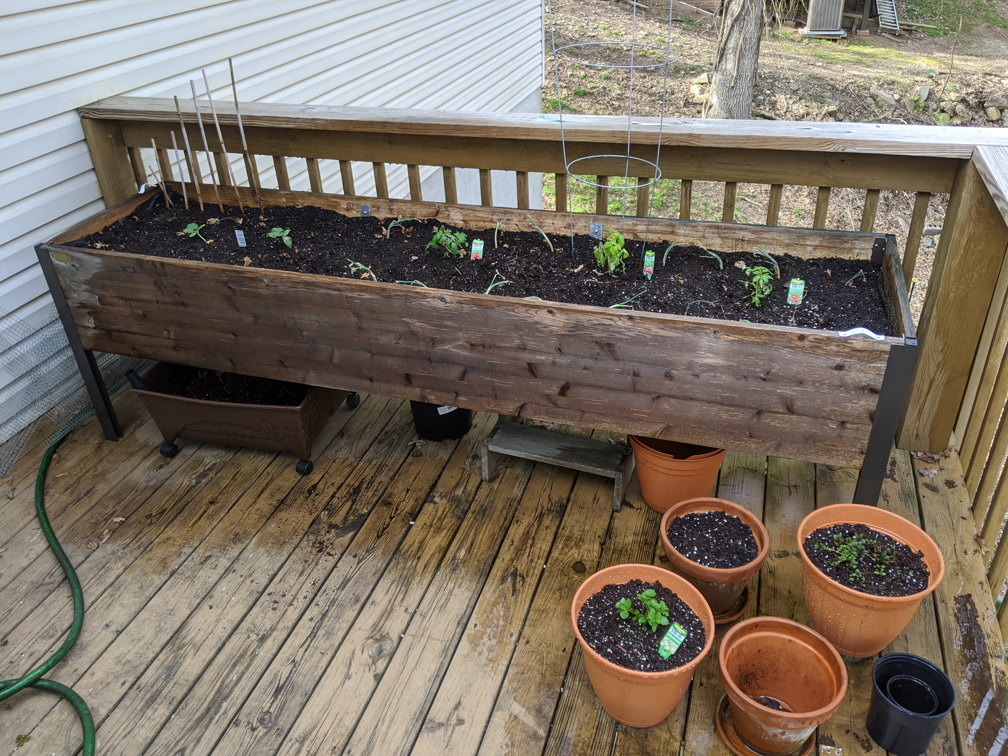 Container garden on a deck